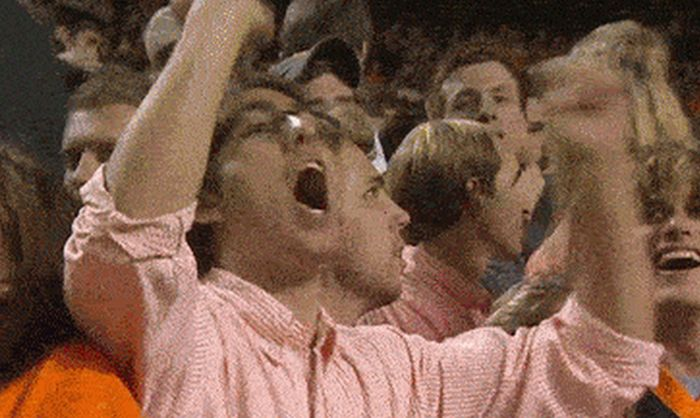 Funny Sports Fans (15 gifs)