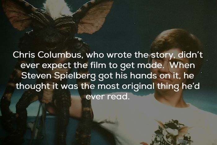 Gremlins Movie Facts (21 pics)