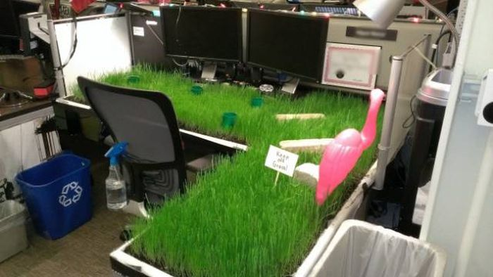 Work Fails And Pranks (64 pics)
