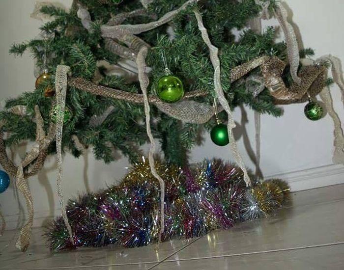 Christmas Tree In Australia (2 pics)