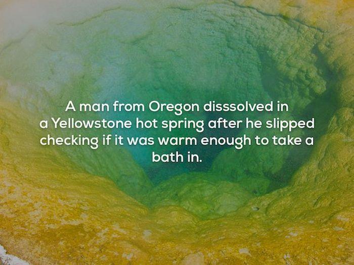 Creepy Facts (21 pics)