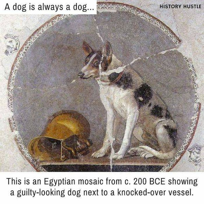 Facts That Come From The Past (42 pics)