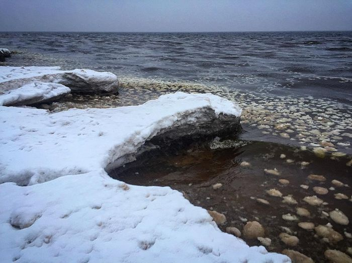 Ice Balls On The Coast Of The Gulf Of Finland (5 pics)