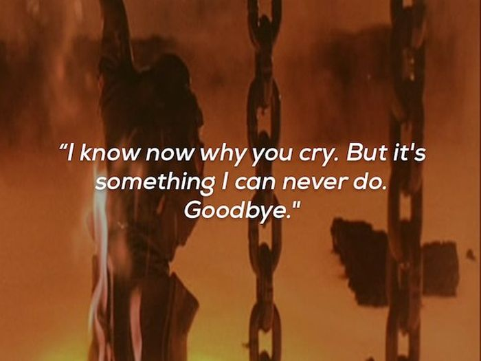 Last Words Of Dying Film Characters (15 pics)
