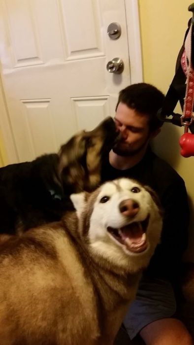 Pets Who Stole Their Owner's Partners (28 pics)
