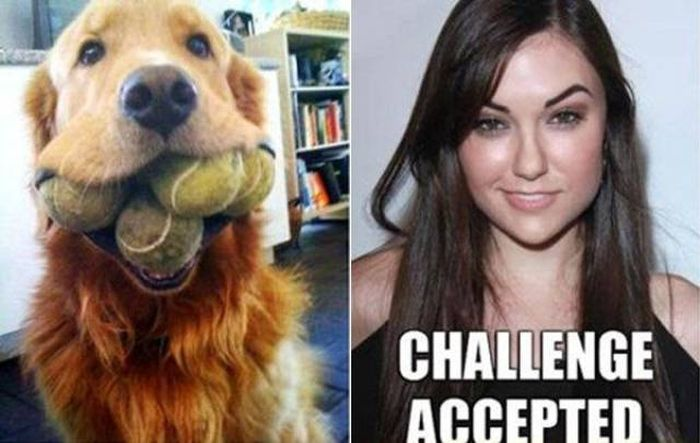 When You Accept Each And Every Challenge (29 pics)