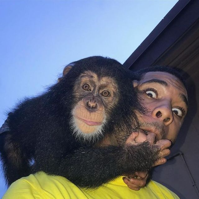 This Exotic Animal Specialist Is The Real-Life Tarzan (27 pics)