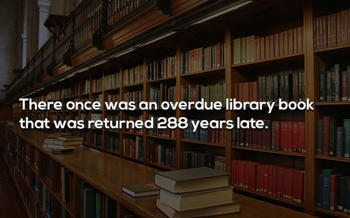 Funny Facts (20 pics)