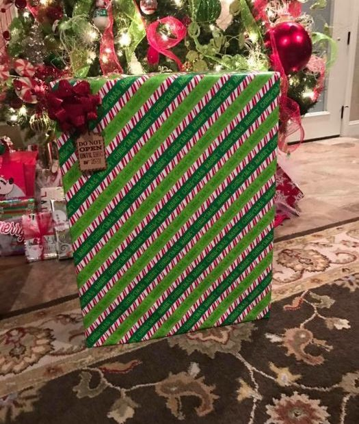 Fun With Gift Wrapping (11 pics)