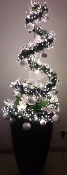 Christmas Pics (35 pics)