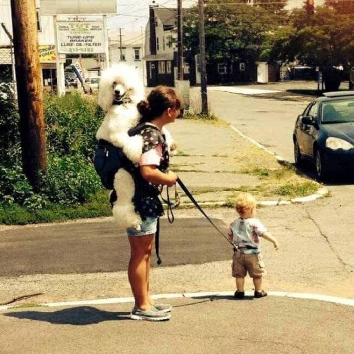 There Is Something Strange In These Photos (45 pics)