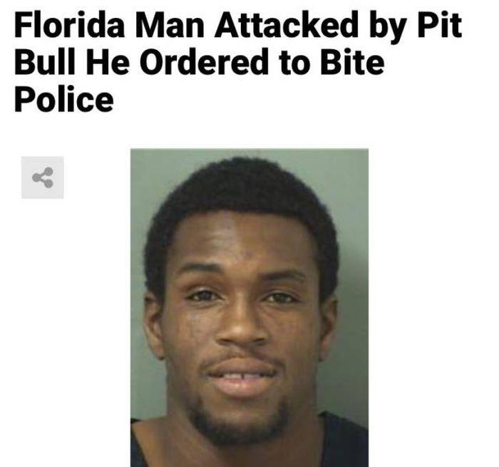 Florida Is A Very Weird Place. Part 2 (45 pics)