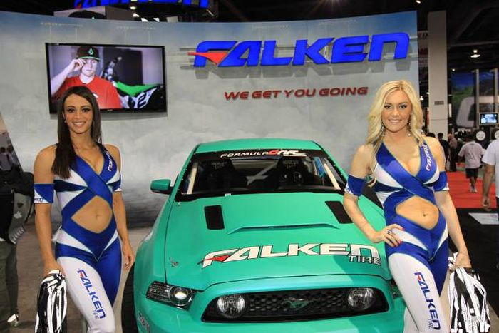 Hot Girls At Motor Shows (47 pics)