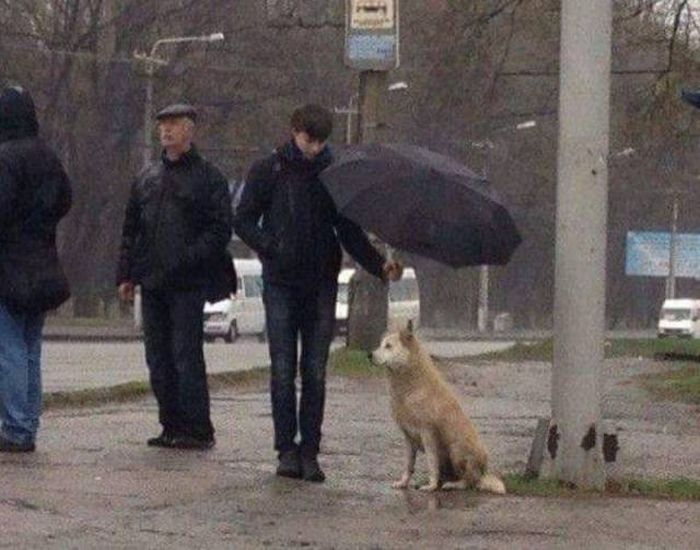 When A Picture Says More Than Just A Thousand Words (57 pics)