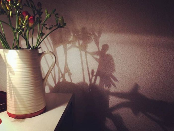 Shadow World (20 pics)
