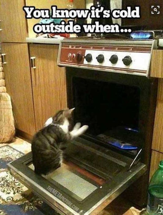 Funny Memes About These Freezing Days (29 pics)