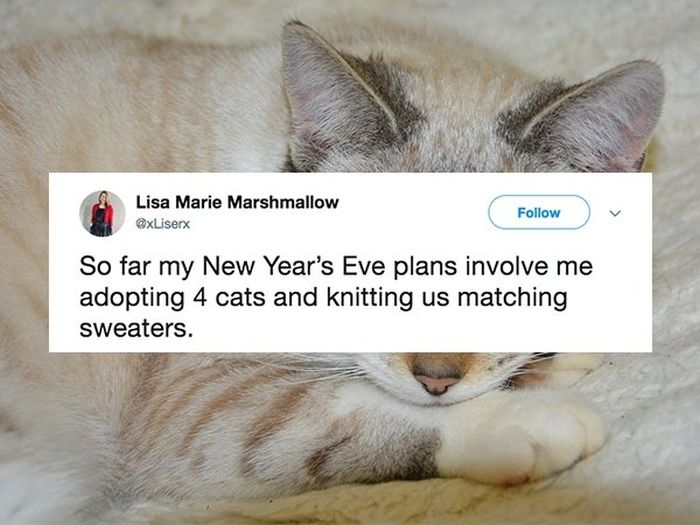 Funny New Year's Tweets (18 pics)