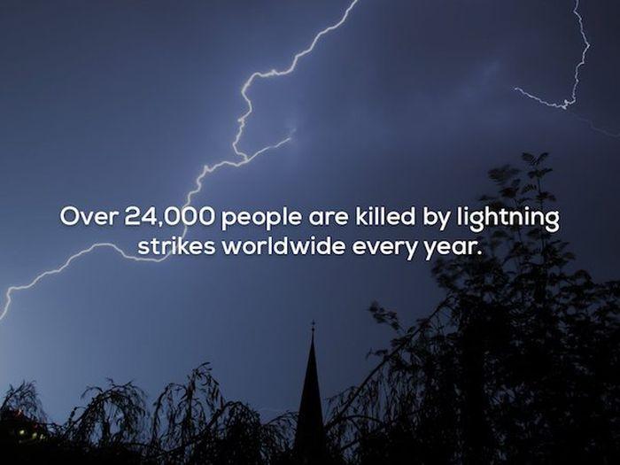 Strange Facts (21 pics)