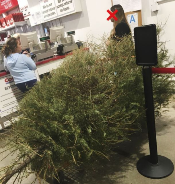 Woman Returns A Christmas Tree On January 4th, Here Is The Shop's Response (4 pics)