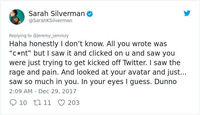 Sexist Troll Attacks Sarah Silverman On Twitter. She Responses (26 pics)