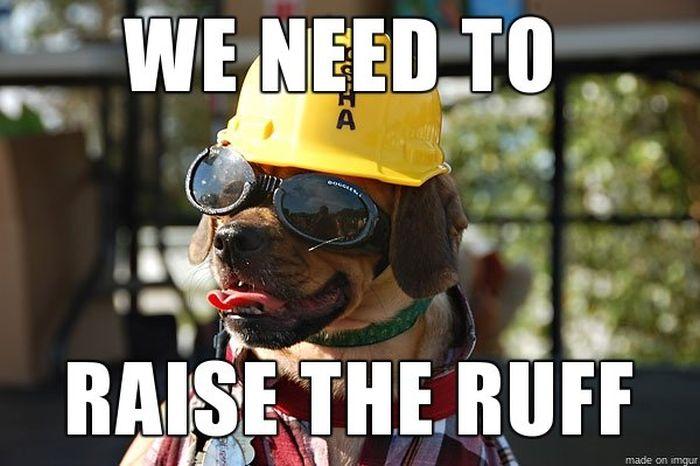 Construction Humor (33 pics)