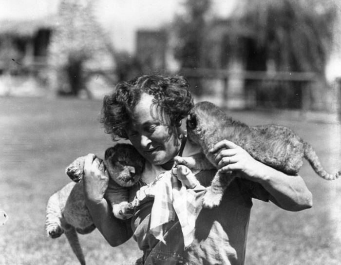 Vintage Photos Of The LA Lion Farm (20 pics)