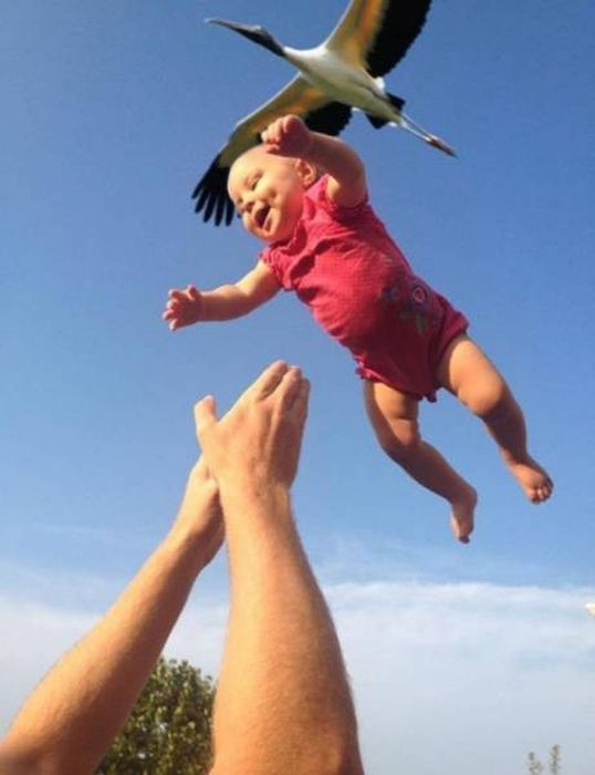 Photos That Needed That Exact Perfect Moment (37 pics)