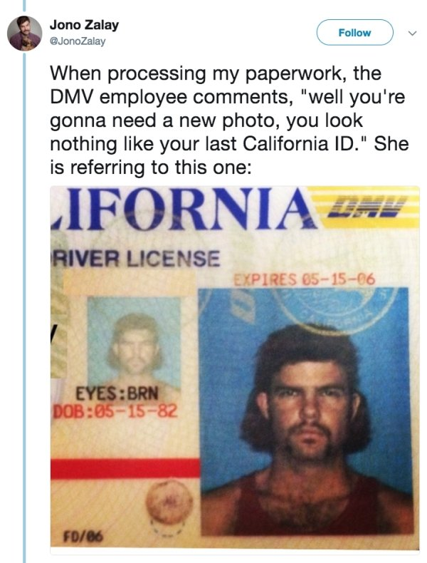 One Family Has A Very Special Relationship With The DMV (16 pics)