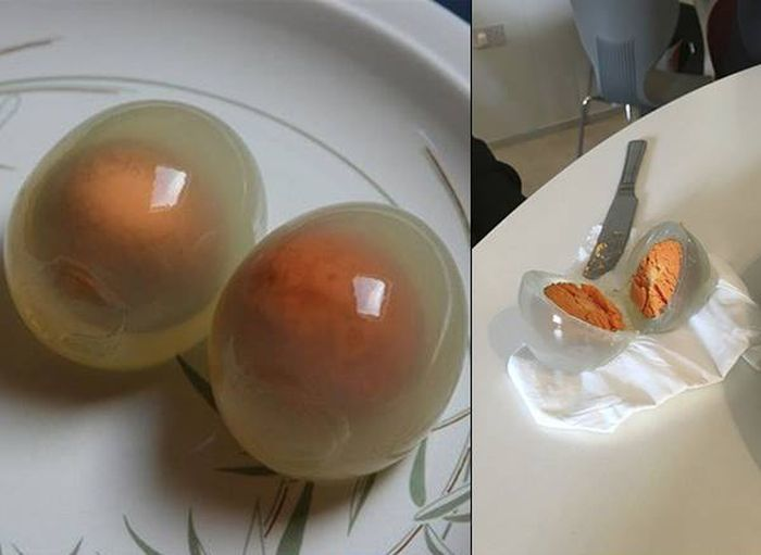 Boiled Penguin Eggs (4 pics)