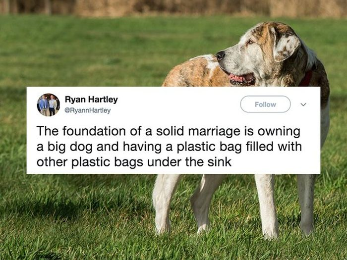 People Who Are Totally Nailing This Whole Marriage Thing (31 pics)