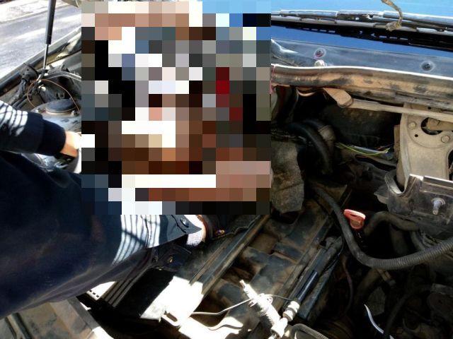 Migrants Hiding Underneath A Car's Bonnet And Seats (2 pics)