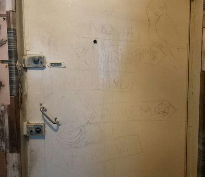 DIY Door (5 pics)