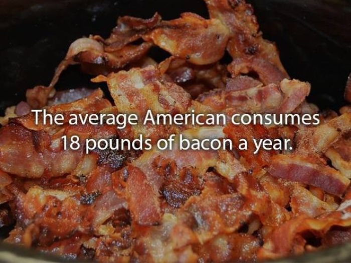 Well-Cooked Bacon Facts (20 pics)