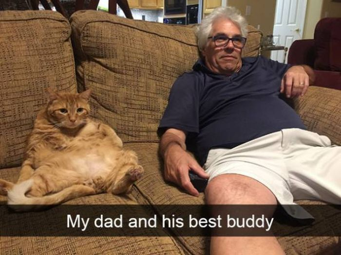 Cat Snapchats That Show Every Little Detail Of Living With A Cat (25 pics)