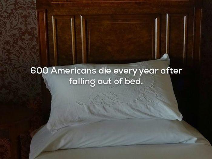 Scary Facts (21 pics)