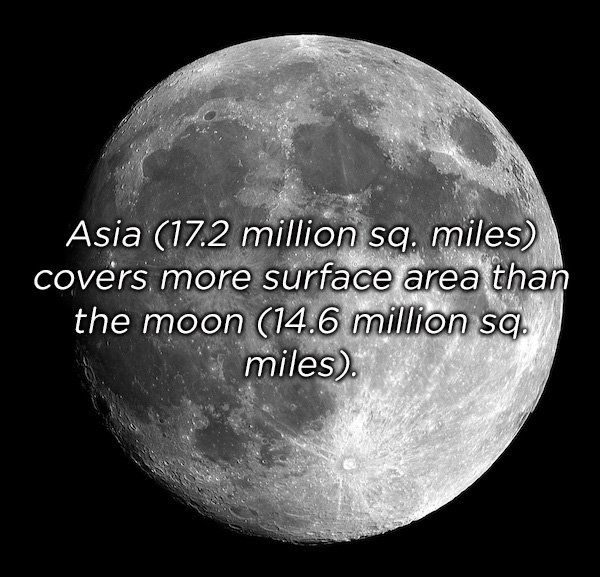 Unbelievable Facts (22 pics)