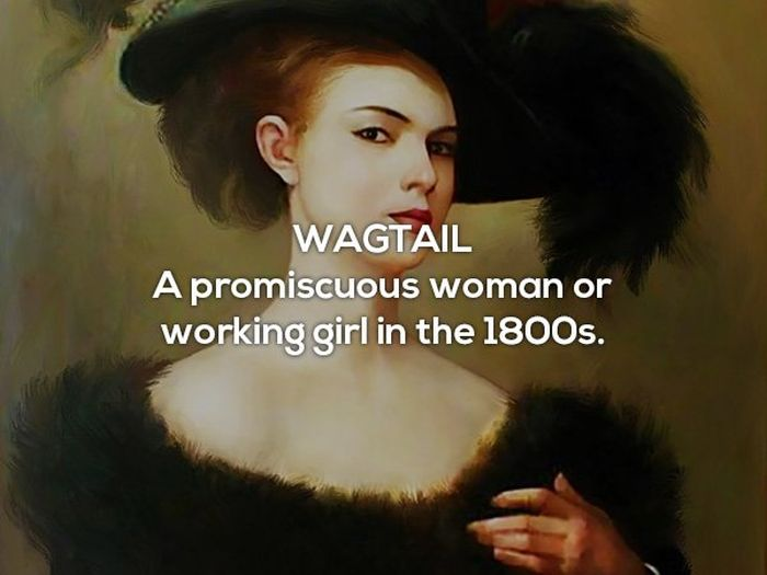 Sex Insults Used Throughout History (16 pics)