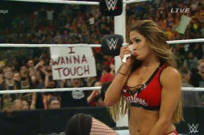 WWE Fan Posters (29 pics)