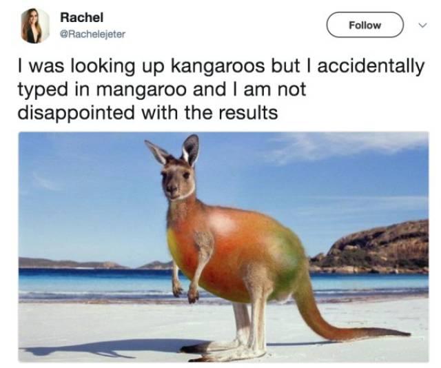 Funny Accidental Google Searches (28 pics)