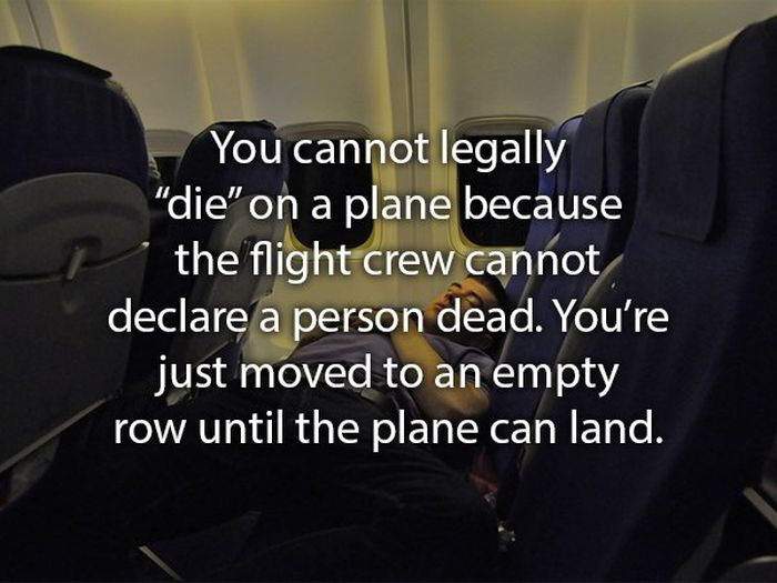Facts About Flying (15 pics)