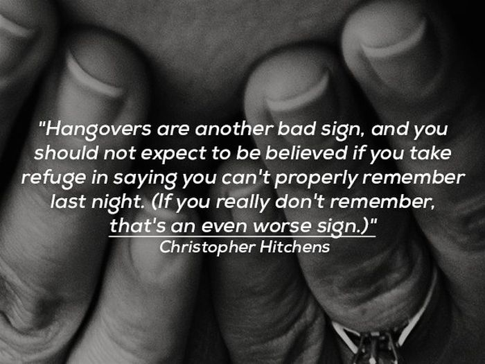 Funny Quotes About Hangovers (15 pics)