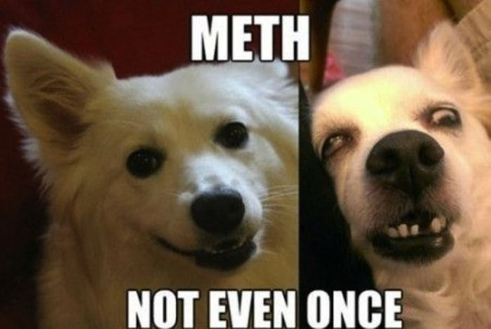 Meth: Not Even Once Meme (27 pics)