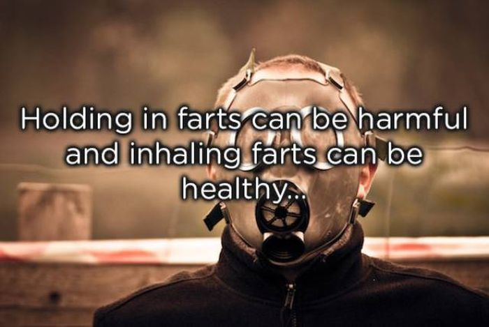 Facts About Farts (20 pics)