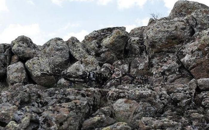 Can you spot the Sniper? (14 pics)