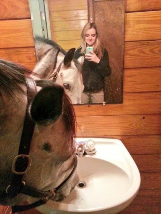 How To Make A Good Selfie (21 pics)