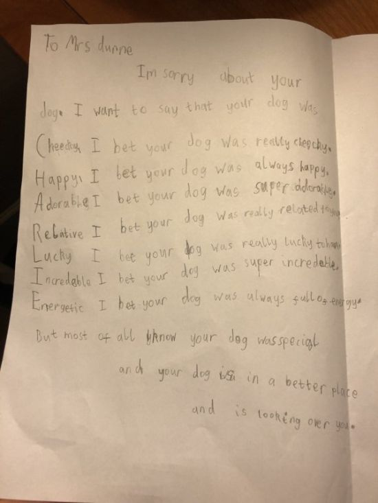 Little Boy Writes His Teacher A Letter After Her Dog Died (9 pics)