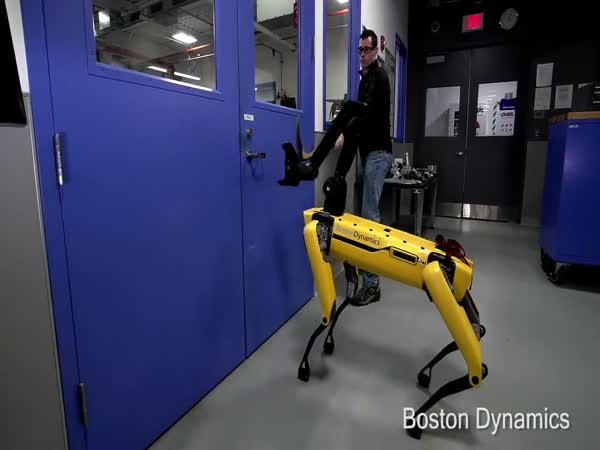 Boston Dynamics Robot Fends Off Human To Open Door