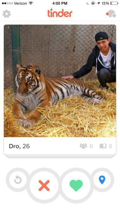 Guy Just Got An A+ For His Efforts On Tinder (8 pics)