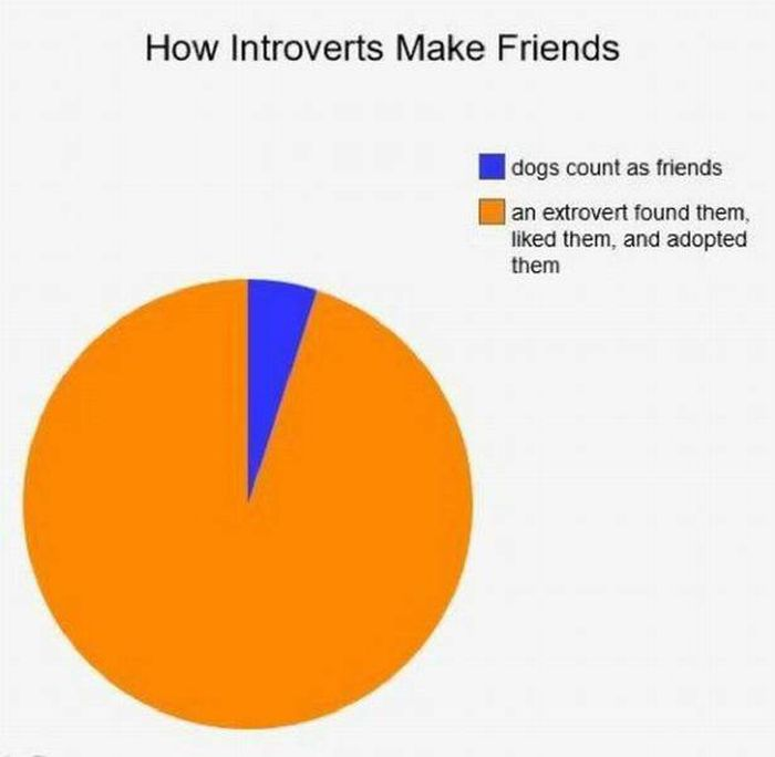 Problems Introverts Have (25 pics)