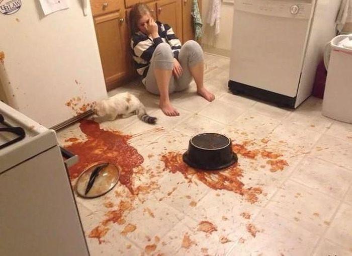 Food Fails (38 pics)